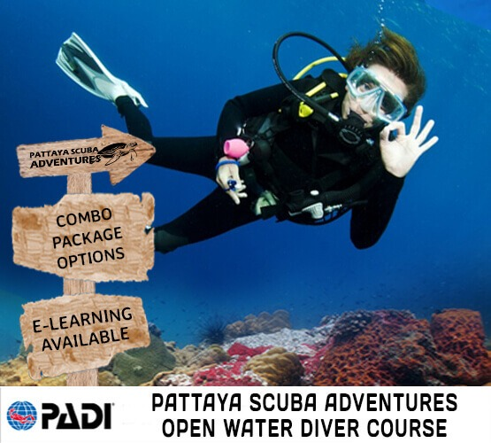 padi open water diver course pattaya scuba adventures thailand