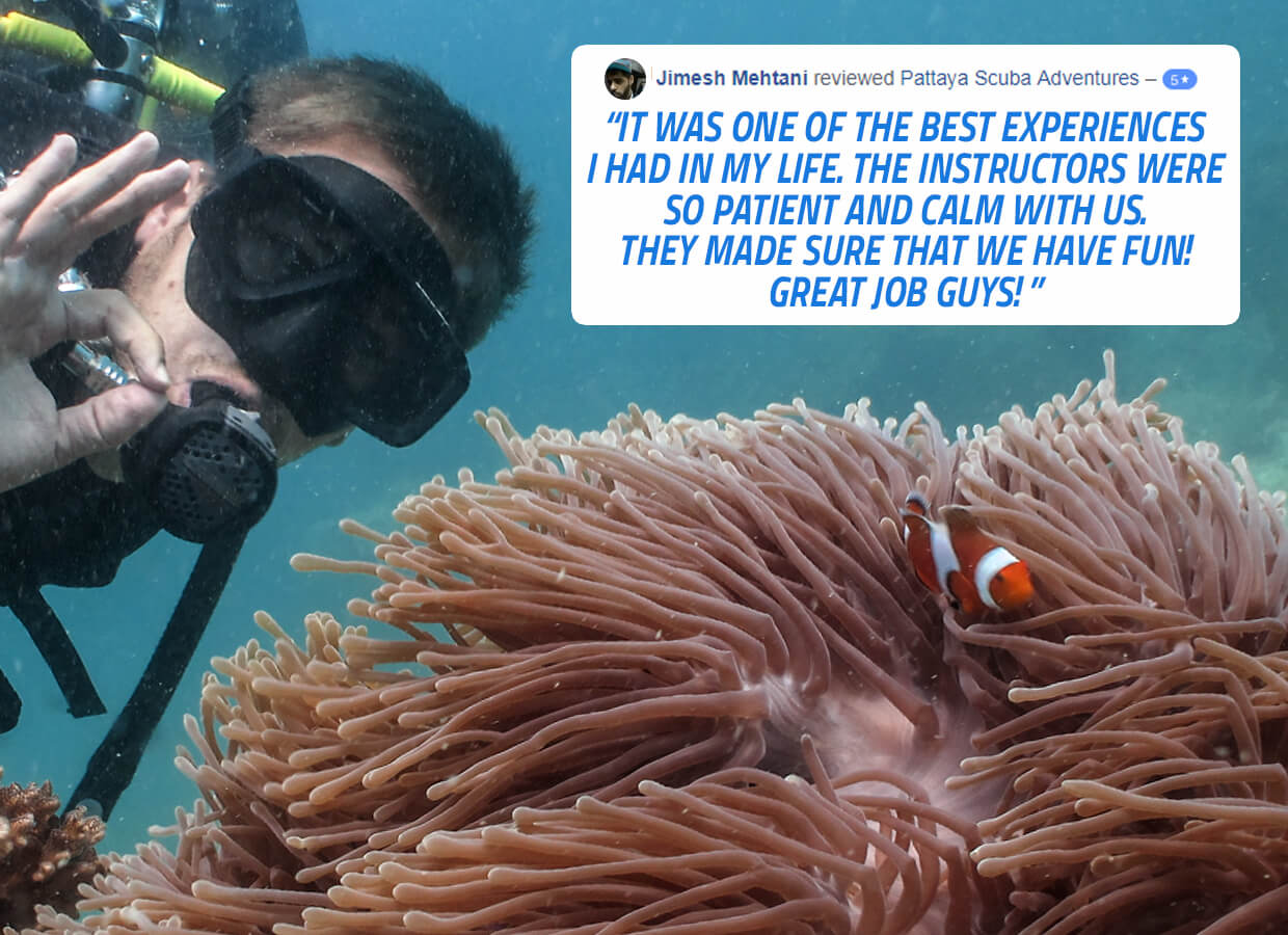 Best Pattaya Dive Center Review