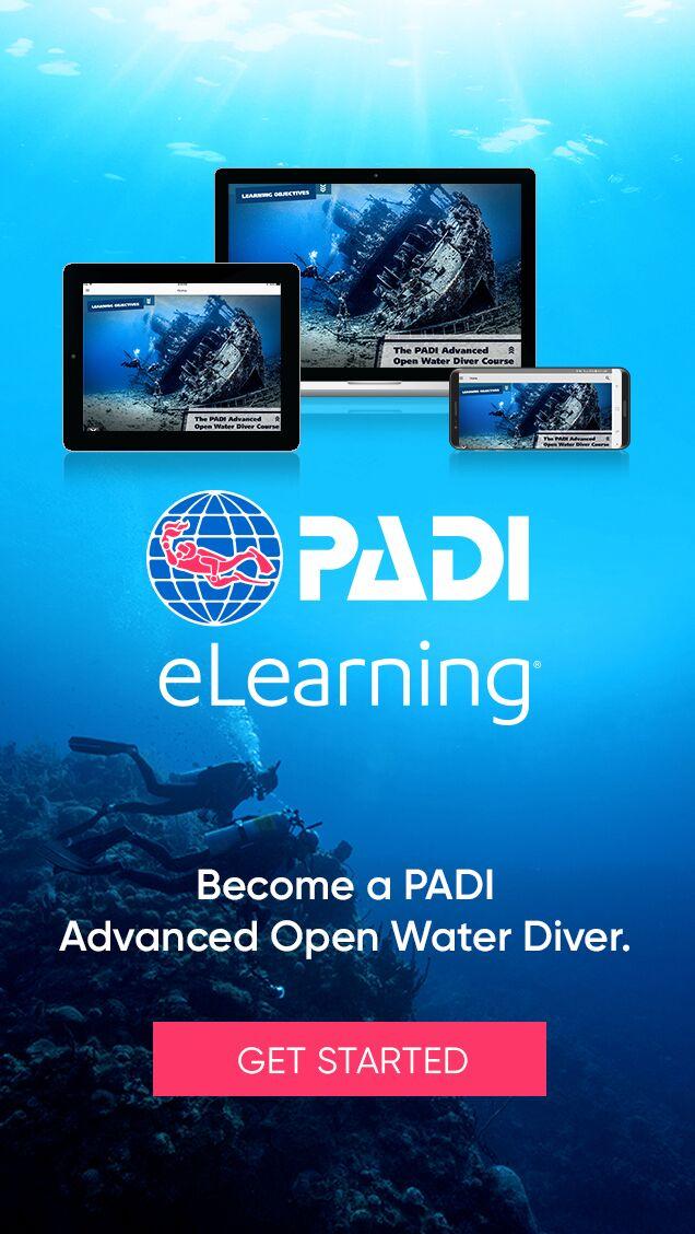 PADI e-LEARNING Digital Courses | Pattaya Scuba Adventures