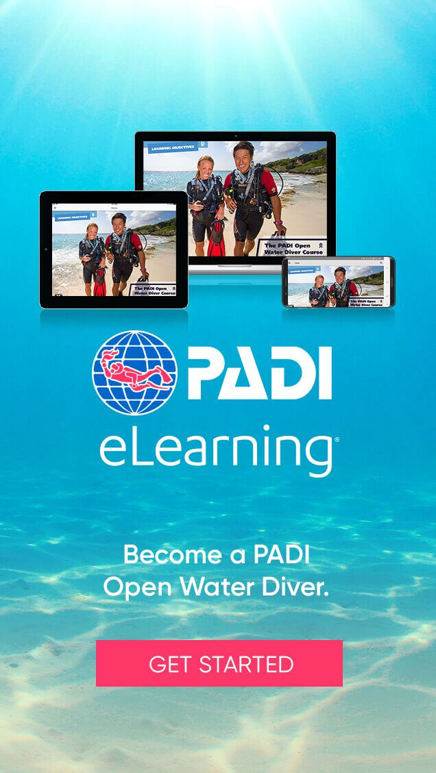 Padi e learning digital courses pattaya scuba adventures padi dive padi open water diver elearning dive center fandeluxe Choice Image