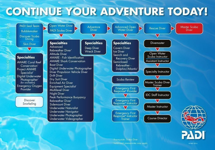 Padi Dive Courses Learn To Dive Pattaya Thailand
