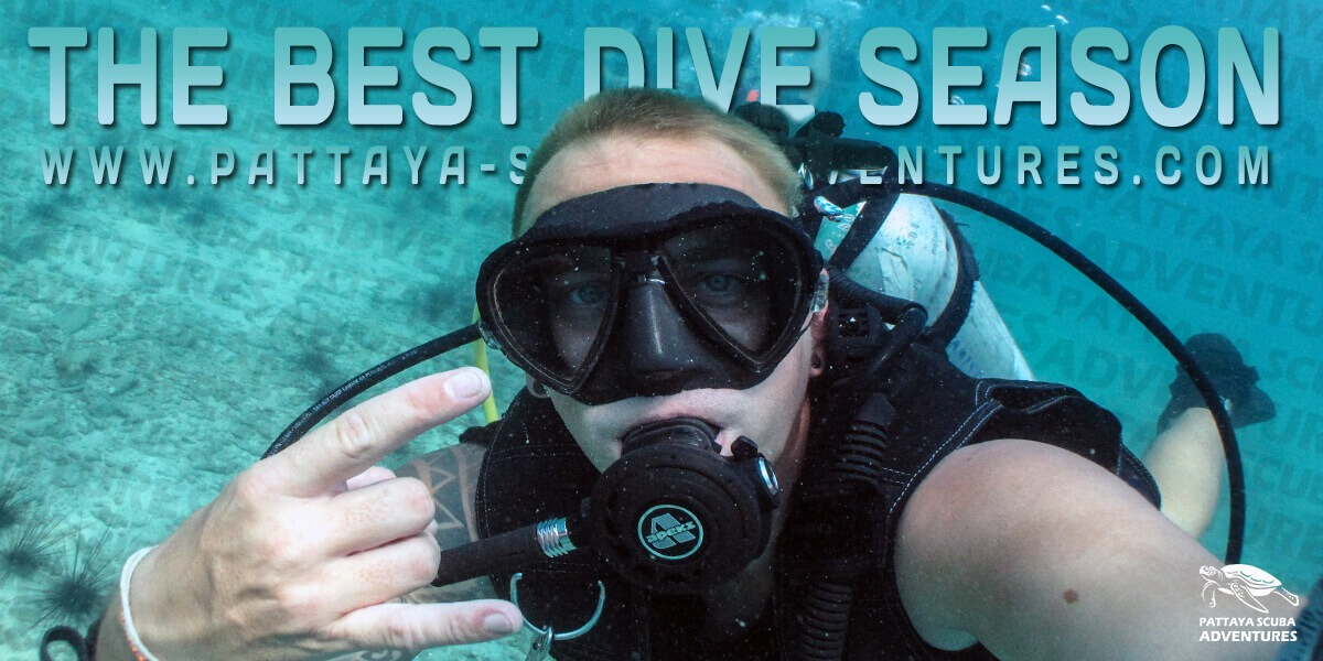 Pattaya Diving Sites best season for diving thailand