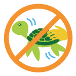 Green Fins - No Touching or Chasing Marine Life