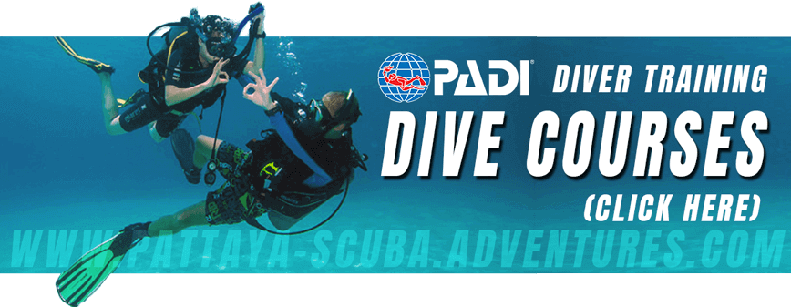 PADI Diver Training Pattaya Dive Courses