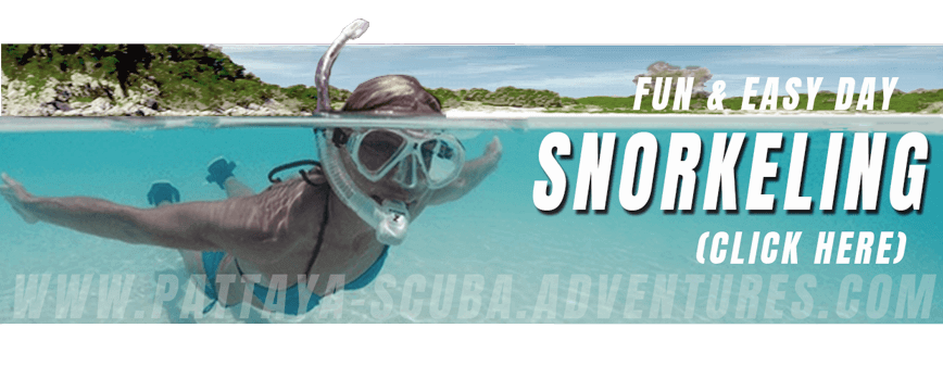 Snorkelling in Pattaya Adventures Thailand
